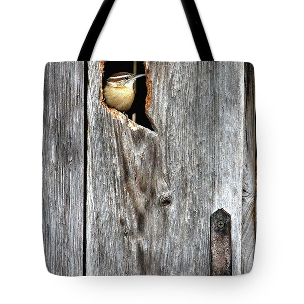 In The Outhouse Shed Tote Bag