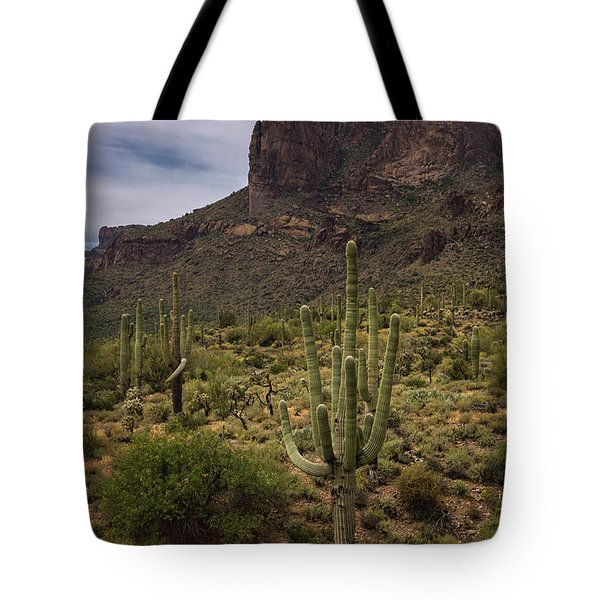 Tote Bag featuring the photograph In The Presence Of The Supes  by Saija Lehtonen