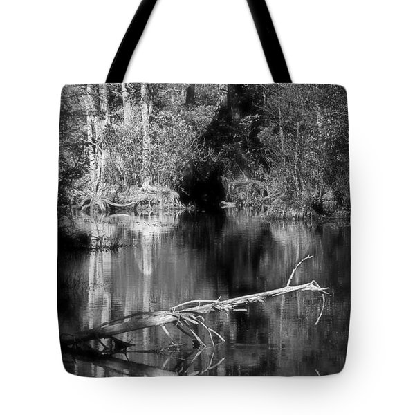 In The Quiet Tote Bag by Allen Beilschmidt