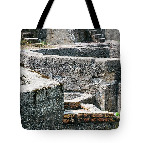 In The Ruins 6 Tote Bag
