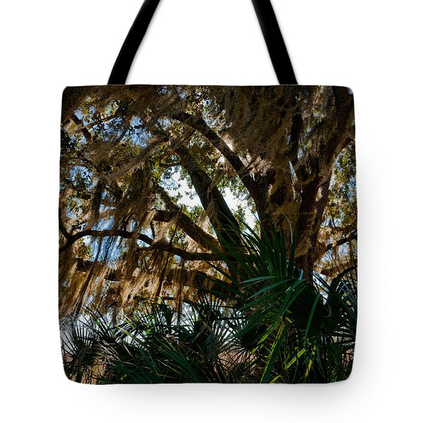 In The Shade Of A Florida Oak Tote Bag by Christopher Holmes