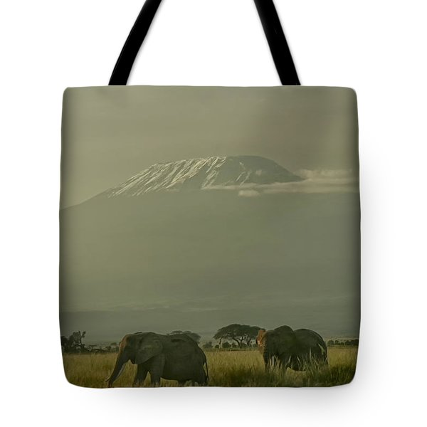 Tote Bag featuring the photograph In The Shadow Of Kilimanjero by Gary Hall