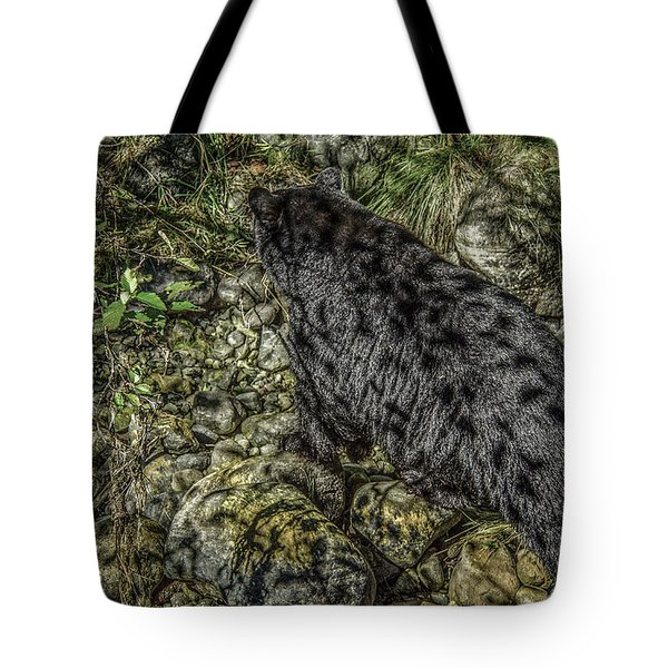 In The Shadows Black Bear Tote Bag