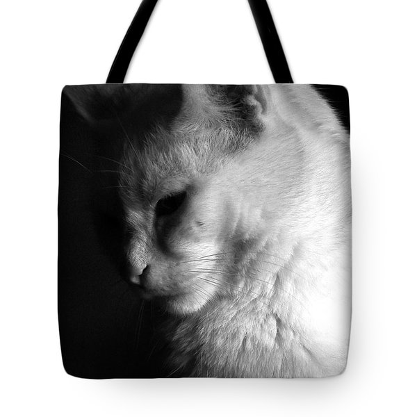 In The Shadows Tote Bag by Bob Orsillo
