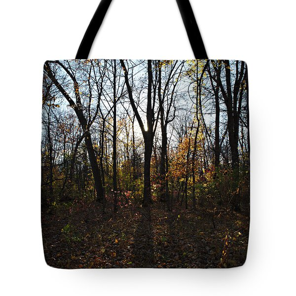 Tote Bag featuring the photograph In The Shadows by Cendrine Marrouat