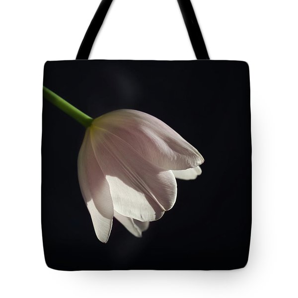Tote Bag featuring the photograph In The Spotlight by Kim Hojnacki