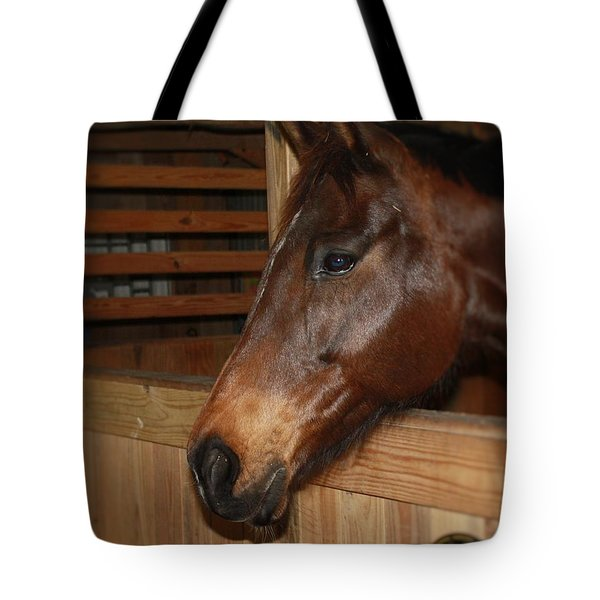 In The Stall Tote Bag