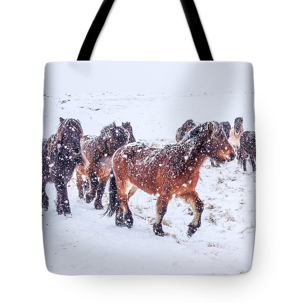 In The Storm 2 Tote Bag