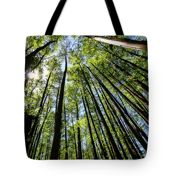 In The Swamp Tote Bag