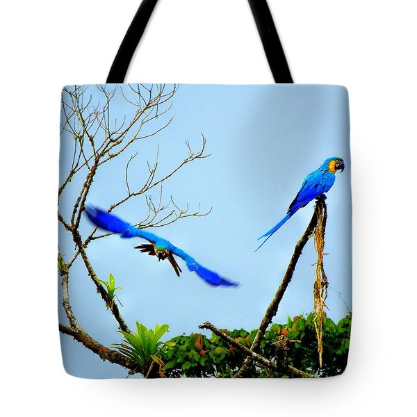 In The Wild Tote Bag by Karen Wiles