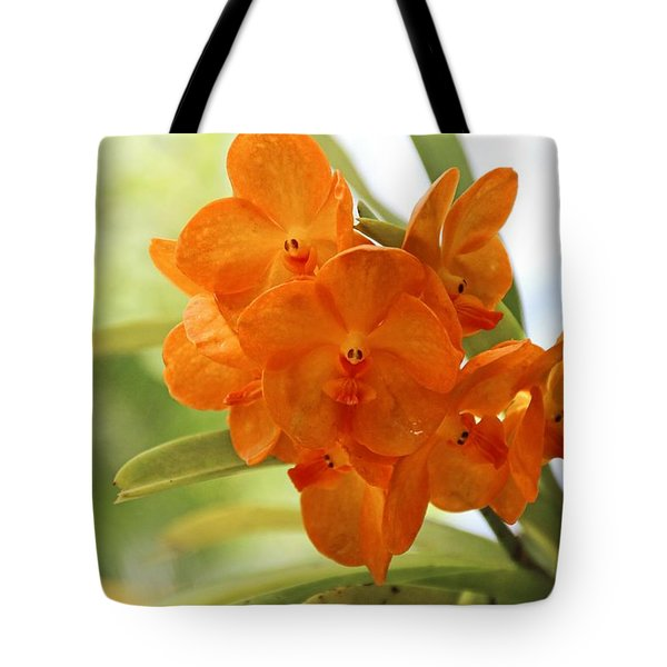 Tote Bag featuring the photograph In This World by Michiale Schneider