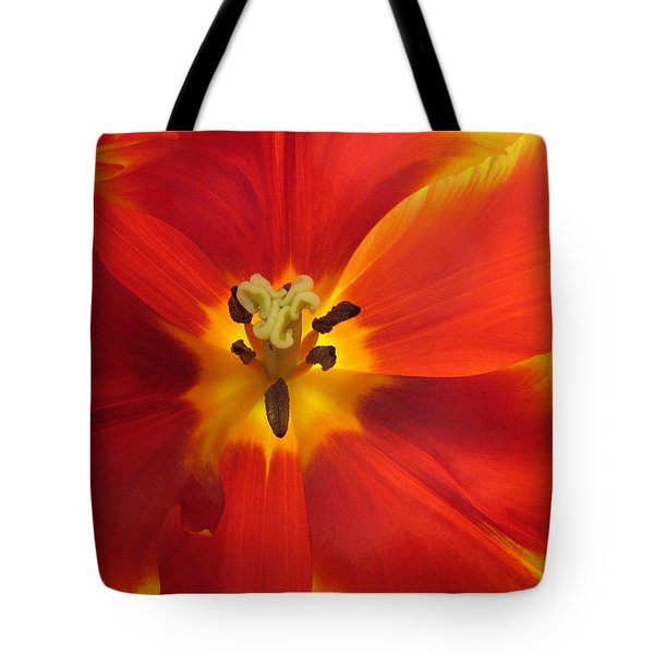 Incandescence Tote Bag by Jessica Jenney
