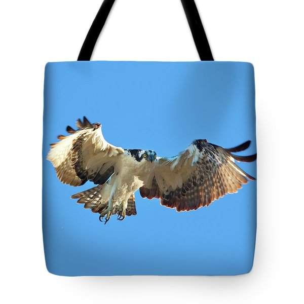 Incoming Osprey Tote Bag