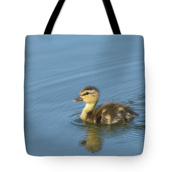 Independence Tote Bag by Fraida Gutovich