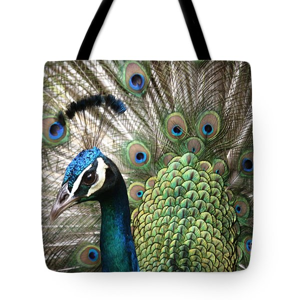 Indian Blue Peacock Puohokamoa Tote Bag by Sharon Mau