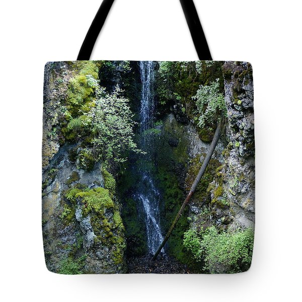 Tote Bag featuring the photograph Indian Canyon Waterfall by Ben Upham III