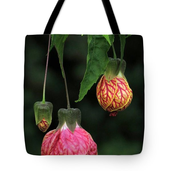 Indian Mallow Tote Bag