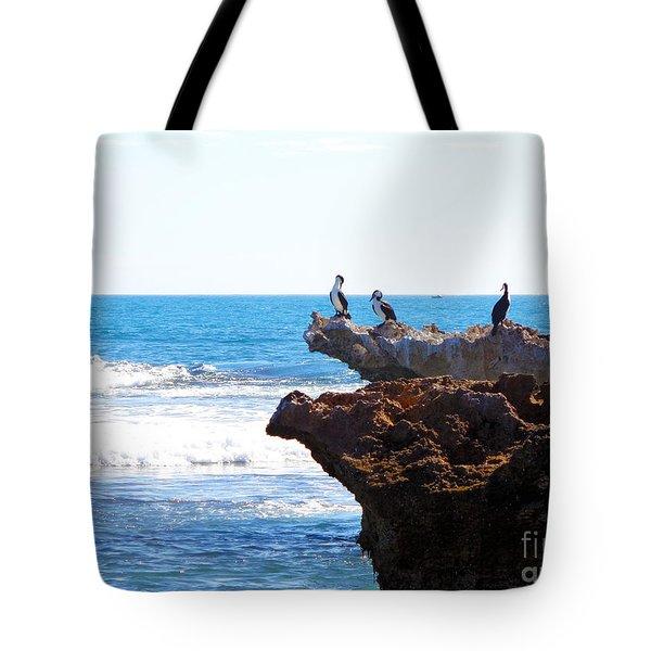 Indian Ocean Birds Resting On Rocks Tote Bag