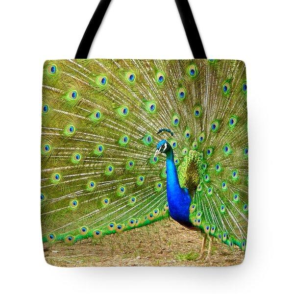 Indian Peacock Tote Bag by Dan Miller