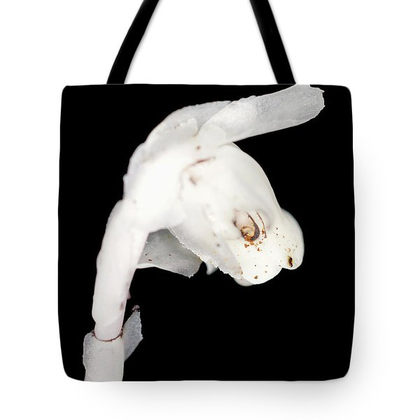 Indian Pipe Head Tote Bag by Meta Gatschenberger