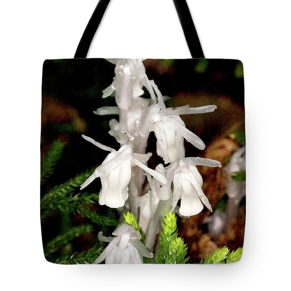 Indian Pipes On Club Moss Tote Bag by Meta Gatschenberger