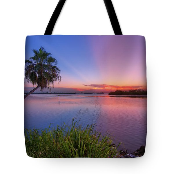 Tote Bag featuring the photograph Indian River State Park Bursting Sunset by Justin Kelefas