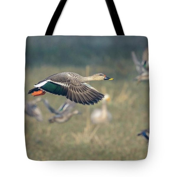 Indian Spot-billed Duck 01 Tote Bag