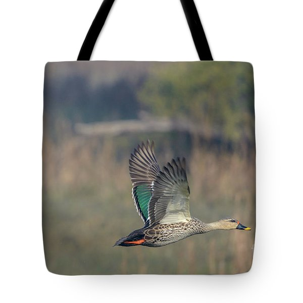 Indian Spot-billed Duck 03 Tote Bag
