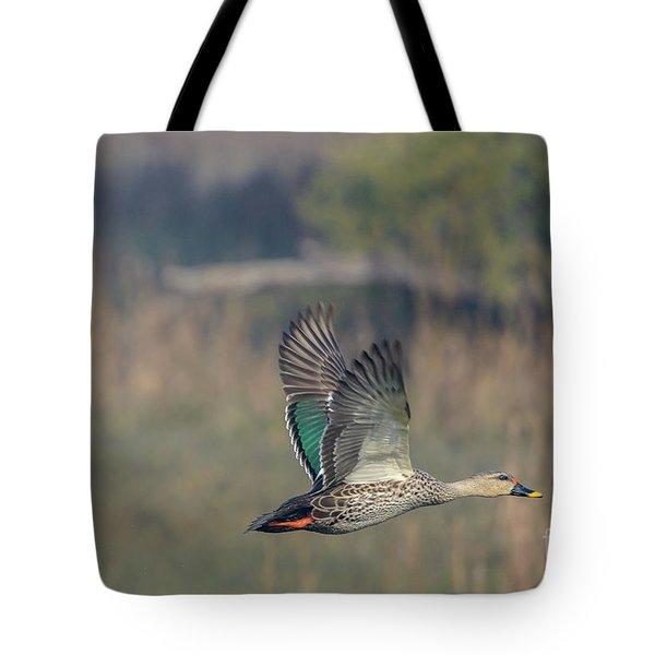 Indian Spot-billed Duck 03 Tote Bag