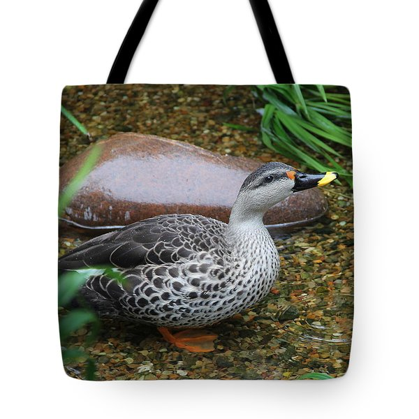Indian Spot-billed Duck Tote Bag
