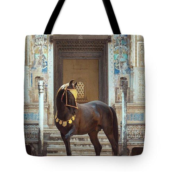 Indian Treasure Tote Bag