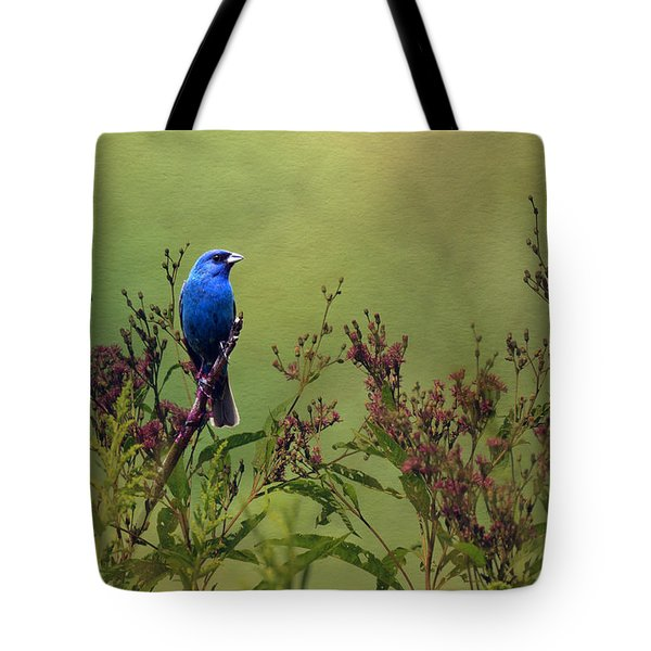 Indigo Bunting  Tote Bag by Ann Bridges