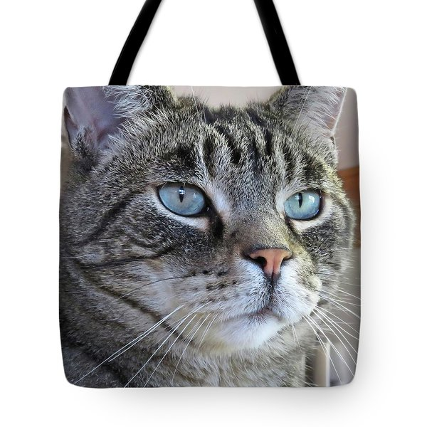 Indy Sq. Tote Bag