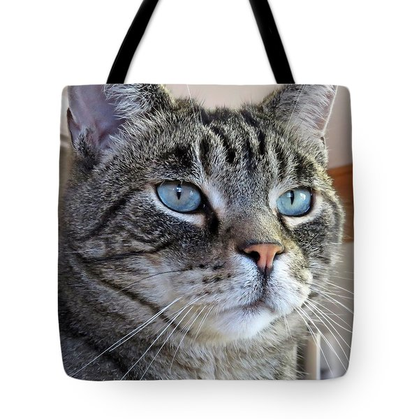 Indy With Border Tote Bag