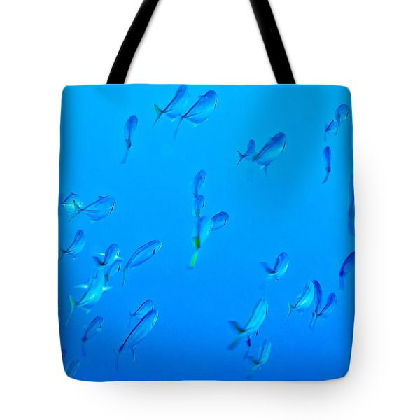 Tote Bag featuring the photograph Infinite Blue by Perla Copernik