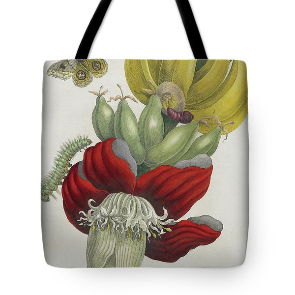 Inflorescence Of Banana, 1705 Tote Bag