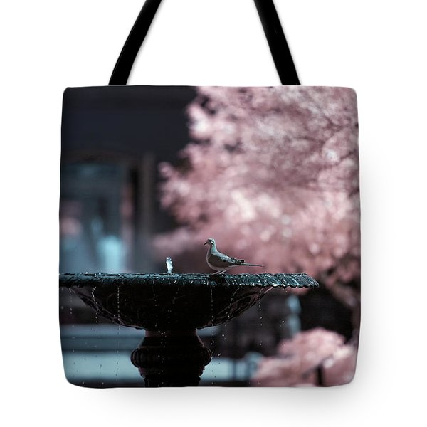 Tote Bag featuring the photograph Infrared Morning Dove by Brian Hale