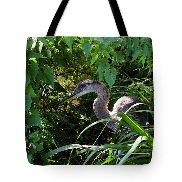 Injure Blue Heron Tote Bag by Donna Brown