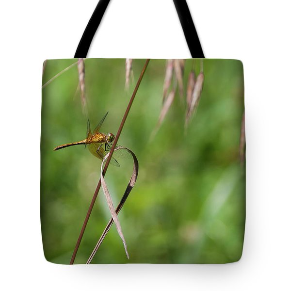 Tote Bag featuring the photograph Inl-4 by Ellen Lentsch