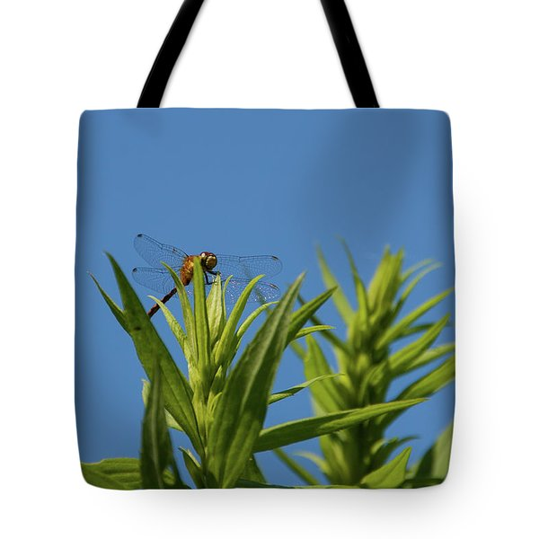 Tote Bag featuring the photograph Inl-6 by Ellen Lentsch