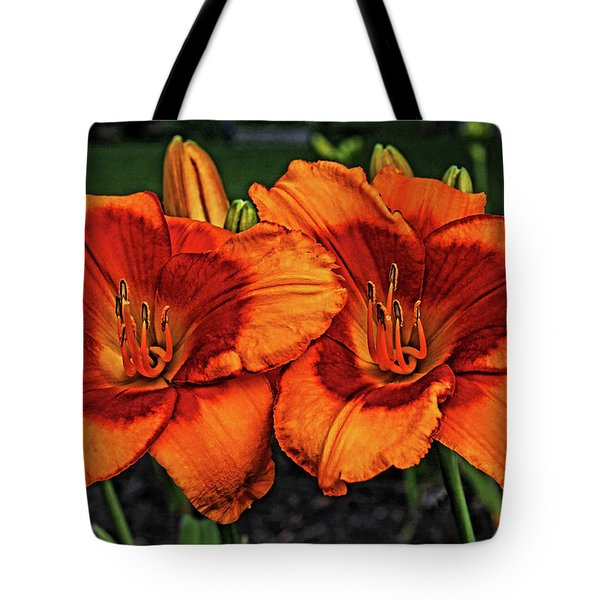 Tote Bag featuring the photograph Innocent Fire by Judy Vincent