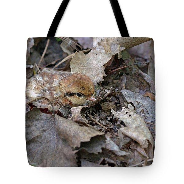 Innocent Look Tote Bag