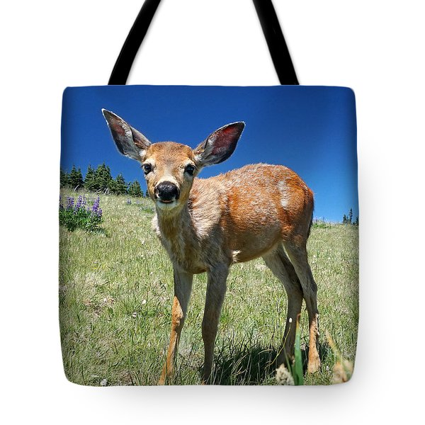 Inquisitive Blacktail Fawn Tote Bag by Martin Konopacki