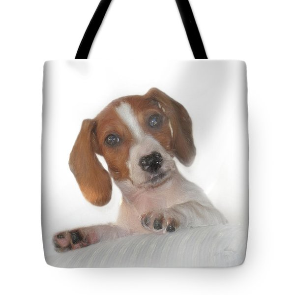 Tote Bag featuring the photograph Inquisitive Dachshund by David and Carol Kelly