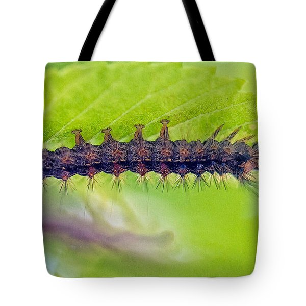 Tote Bag featuring the photograph Insatiable Caterpillar by Constantine Gregory