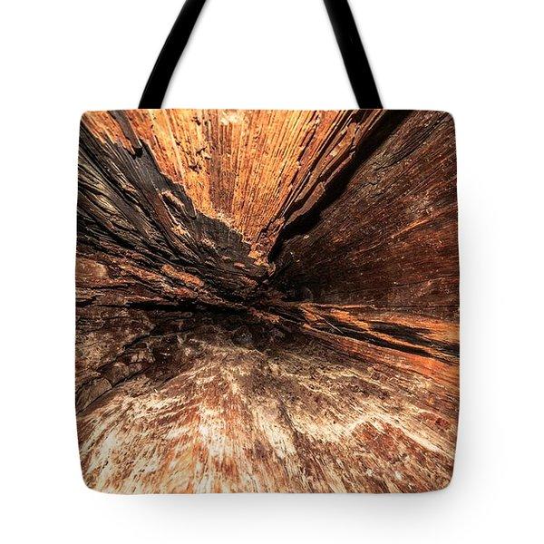 Inside A Tree Tote Bag