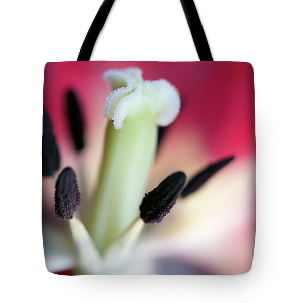 Inside A Tulip Tote Bag