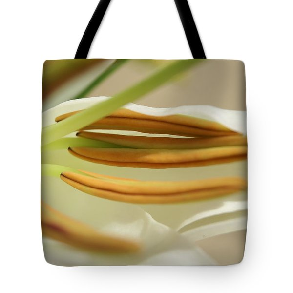 Tote Bag featuring the photograph Inside by Heidi Poulin