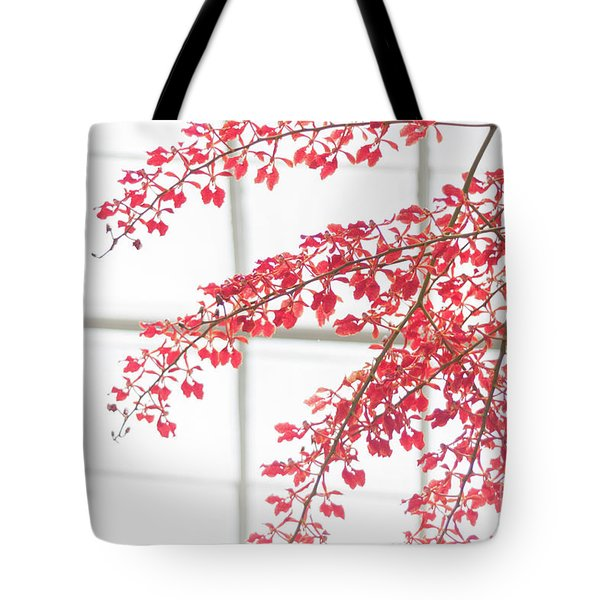 Tote Bag featuring the photograph Inside The Greenhouse by Ana V Ramirez
