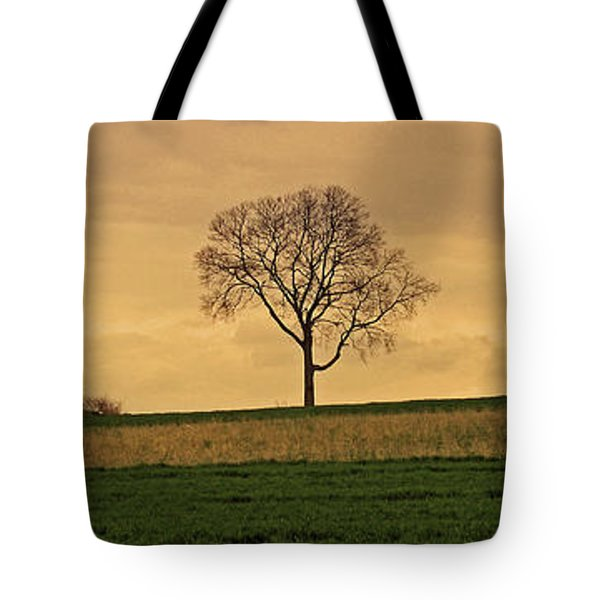 Inspiration Tote Bag by Scott Mahon